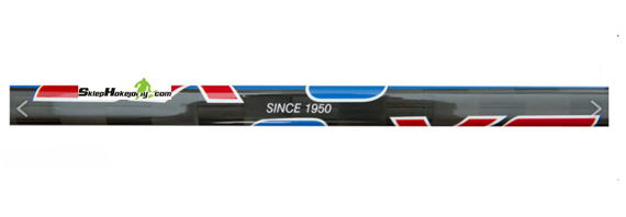 Kij hokejowy SMOLEŃ SX-3 SPECIAL